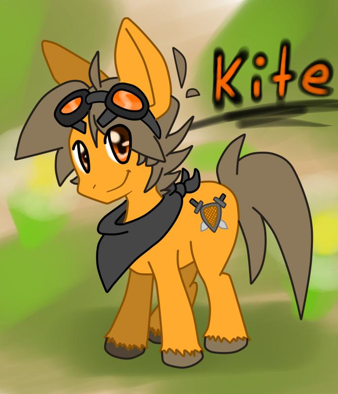 Kite Shield KiteShield