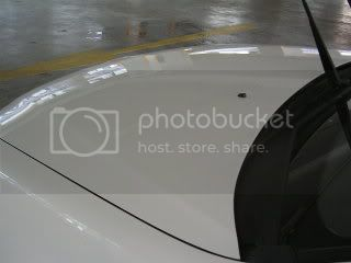 Mobile Polishing Service !!! - Page 5 PICT1300