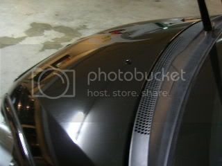 Mobile Polishing Service !!! - Page 5 PICT1377
