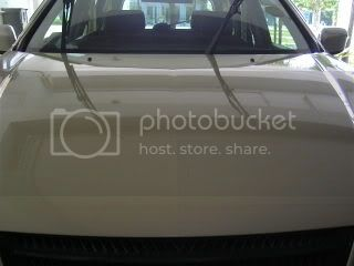 Mobile Polishing Service !!! - Page 2 PICT0970