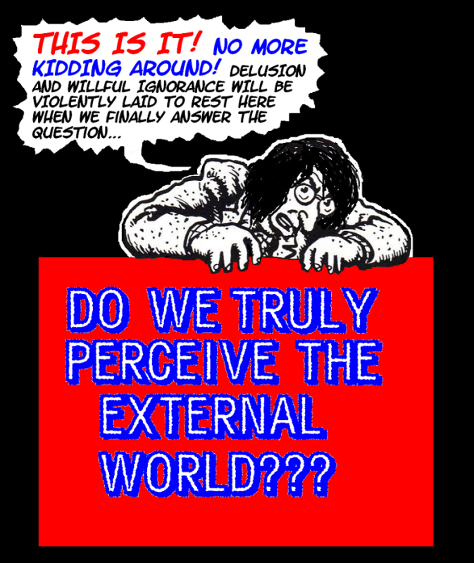 DO WE PERCEIVE THE EXTERNAL WORLD? THIS IS IT---THE FINAL TRUTH! 0externalworld003INTRODUCTION3-1