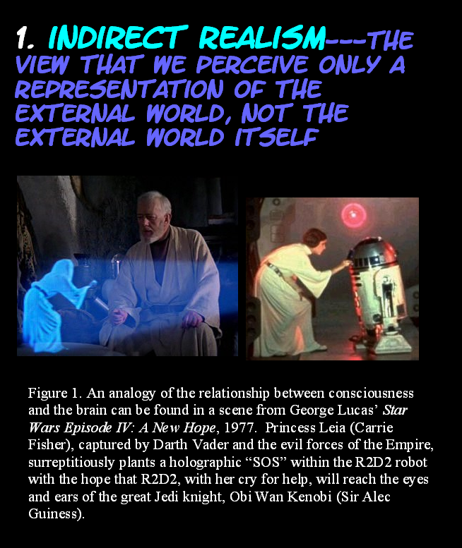 AT LAST! PROOF THAT WE DO NOT PERCEIVE THE EXTERNAL WORLD: THE END Chapter3-8
