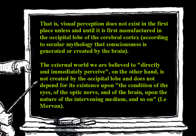 AT LAST! PROOF THAT WE DO NOT PERCEIVE THE EXTERNAL WORLD: THE END Chapter3-84