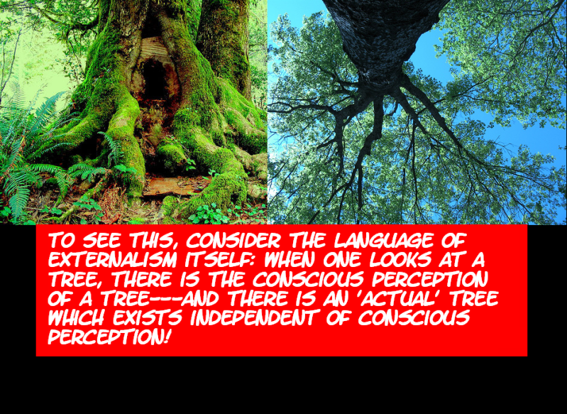 DO WE PERCEIVE THE EXTERNAL WORLD? THIS IS IT---THE FINAL TRUTH! Externalworld17-1