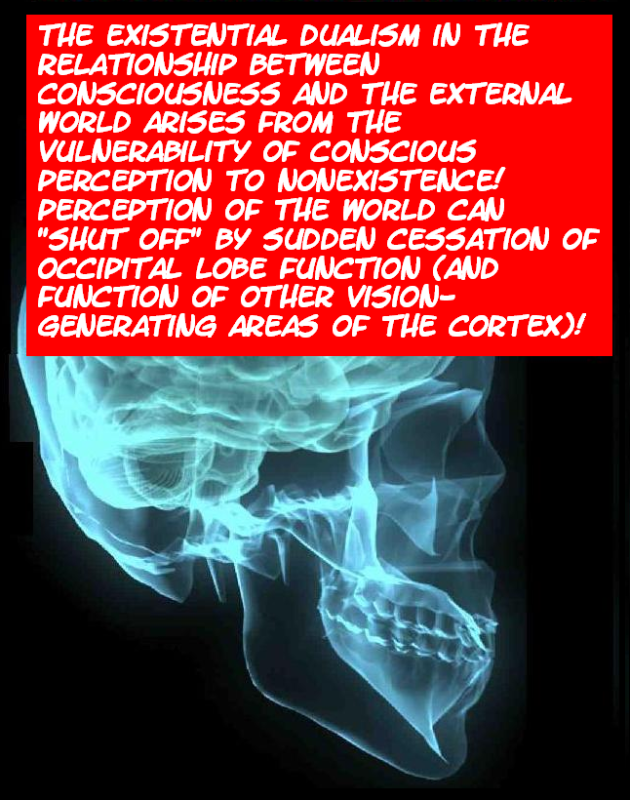 DO WE PERCEIVE THE EXTERNAL WORLD? THIS IS IT---THE FINAL TRUTH! Externalworld20-1