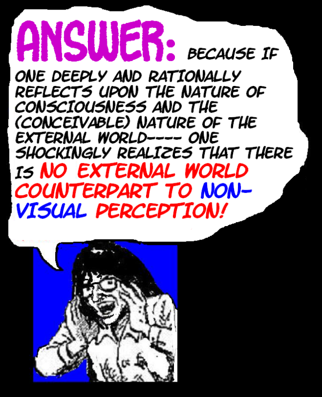 DO WE PERCEIVE THE EXTERNAL WORLD? THIS IS IT---THE FINAL TRUTH! Externalworld22-2