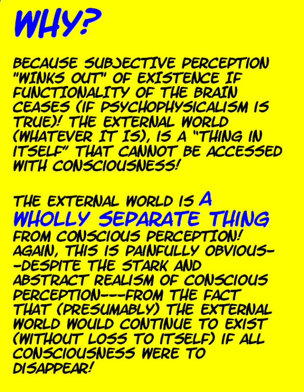 DO WE PERCEIVE THE EXTERNAL WORLD? THIS IS IT---THE FINAL TRUTH! Externalworld33-1