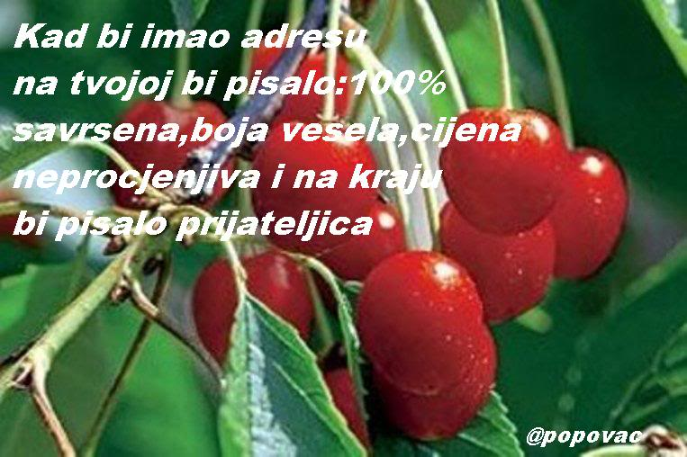 SLIKE  SA TEKSTOM Visnja_maraska_tabfullv