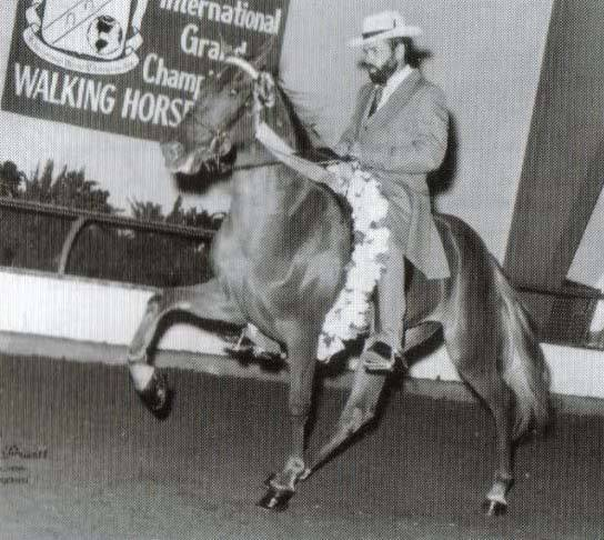The BEST of Walking Horse Trivia! - Page 23 10-4alt