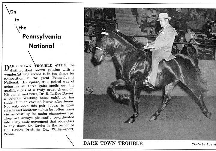 Trivia Archive 8 - Page 39 DarkTownTroubleAd