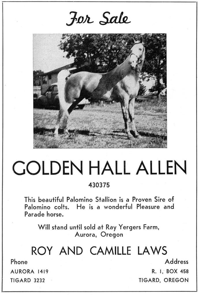 Photos & Memorabilia - Page 14 GoldenHallAllenStudAd
