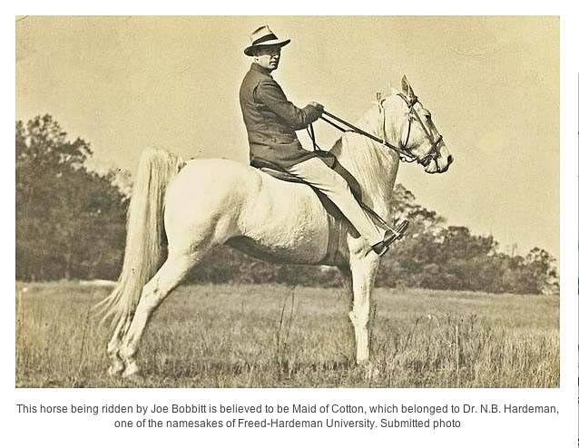 History Of The Tennessee Walking Horse - Page 7 MaidofCottonJoeBobbitt