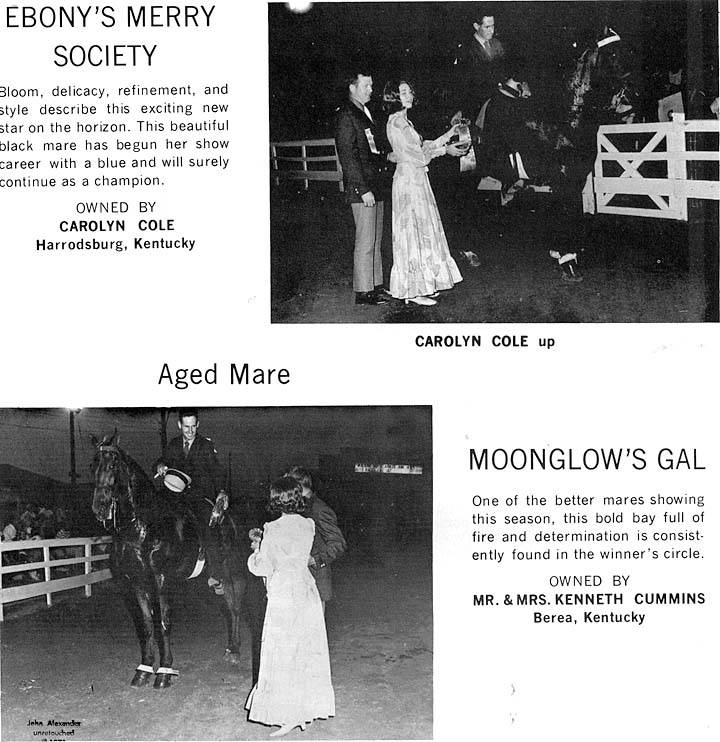 Kentucky, Ohio & Indiana Memories - Page 15 McQuerryStablesAd