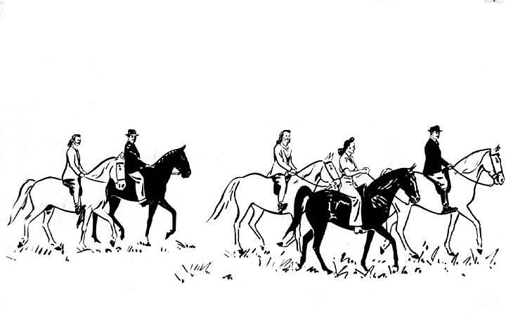 Equine Art - Page 6 MiddleTnTourismDrawing1942
