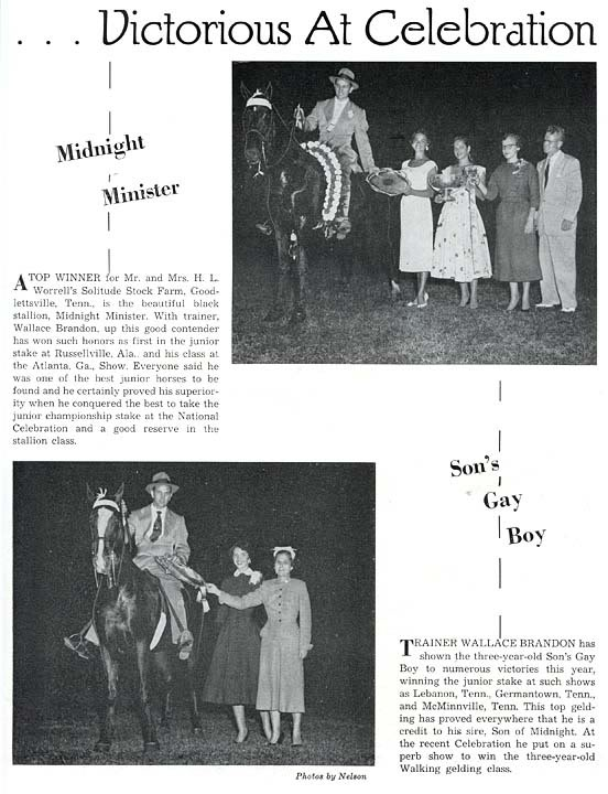 Trivia Archive 8 - Page 40 MidnightMinisterSonsGayBoyAd