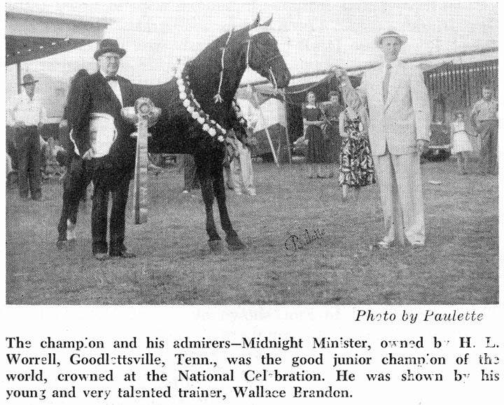 History Of The Tennessee Walking Horse - Page 7 MidnightMinisterwithWallaceBrandonHLWorrell