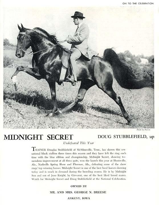 Trivia Archive 8 - Page 38 MidnightSecretAd
