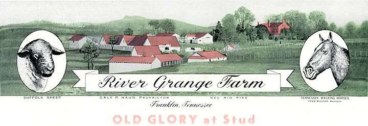 History Of The Tennessee Walking Horse - Page 7 RiverGrangeFarmLogo