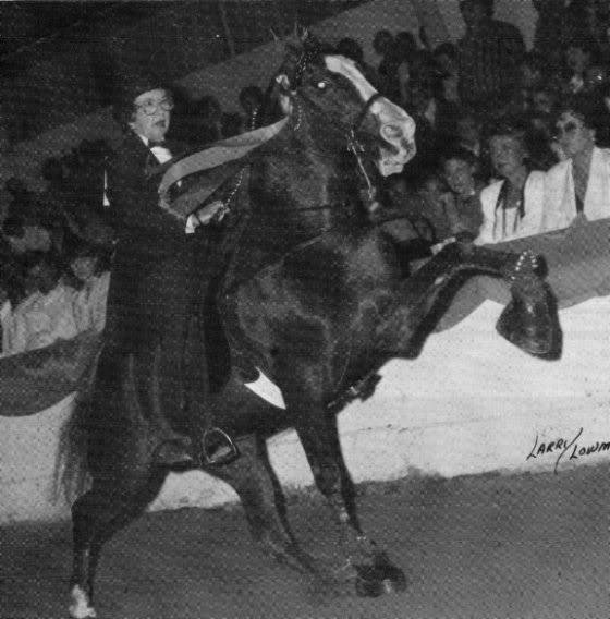 The BEST of Walking Horse Trivia! - Page 23 Awho6