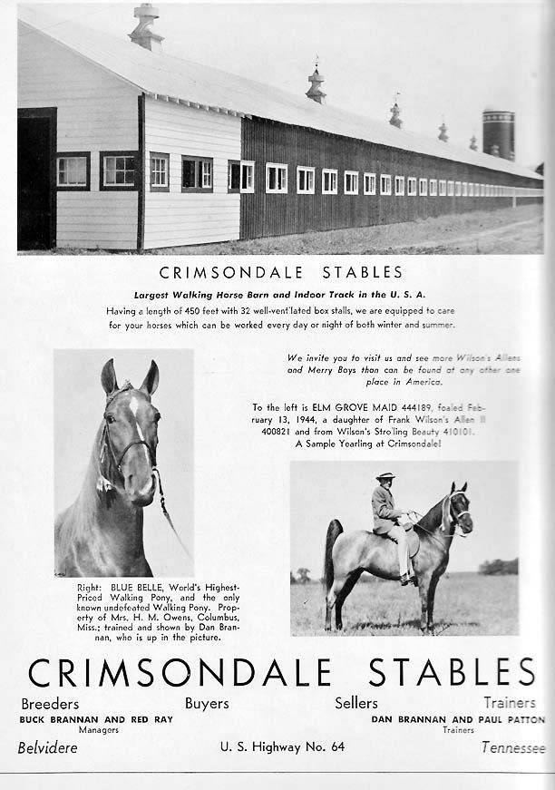 History Of The Tennessee Walking Horse - Page 7 Crimsondale1945