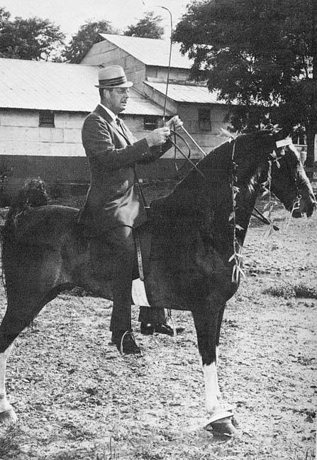 The BEST of Walking Horse Trivia! - Page 25 Who4