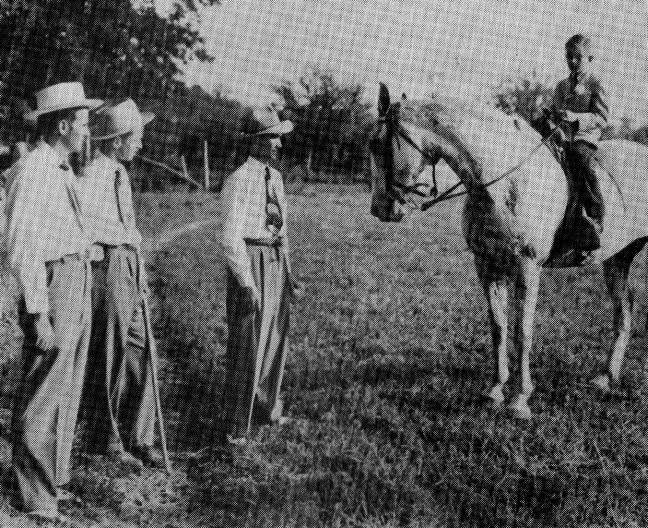 The BEST of Walking Horse Trivia! - Page 25 Whodem-2