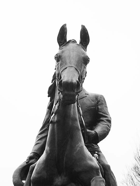 Equine Art Castleman6