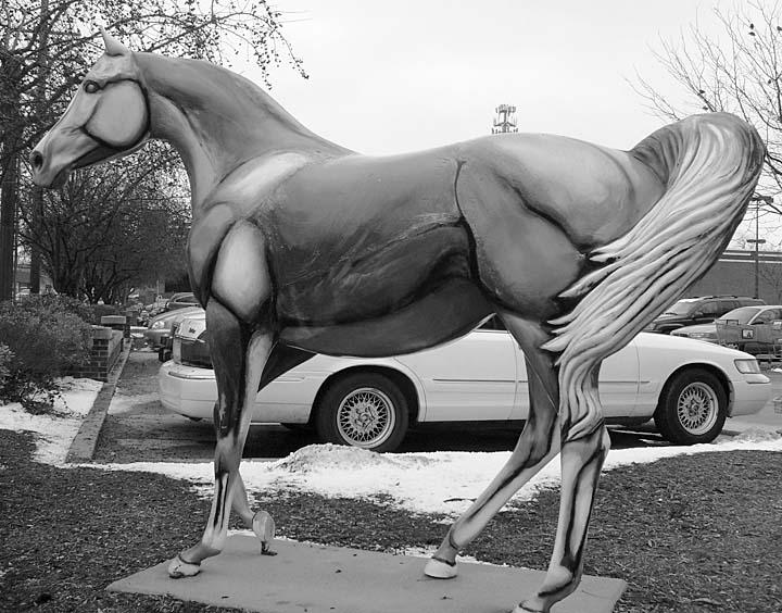 Equine Art Gallop1