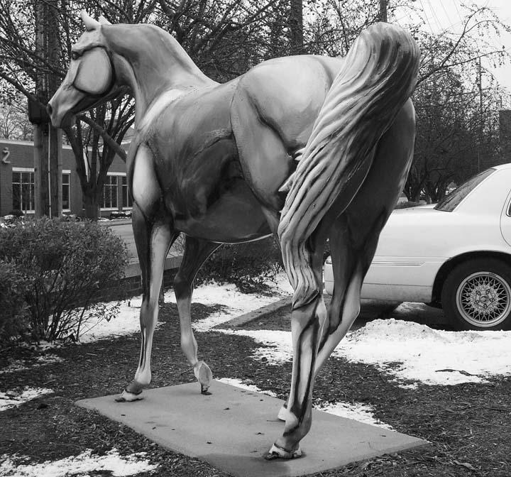 Equine Art Gallop41