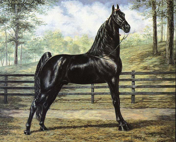 Equine Art MagicBumPainting