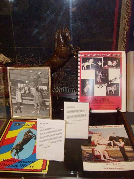 The BEST of Walking Horse Trivia! - Page 25 S6300356