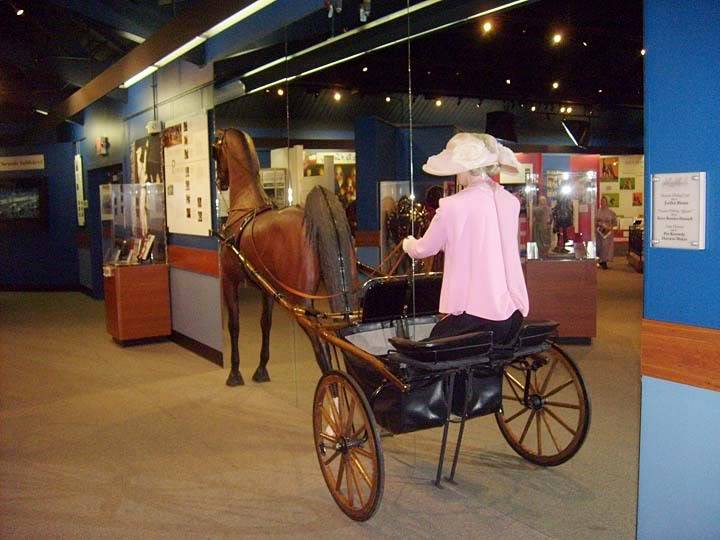 The BEST of Walking Horse Trivia! - Page 25 S6300361