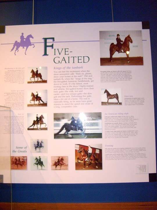 The BEST of Walking Horse Trivia! - Page 25 S6300362