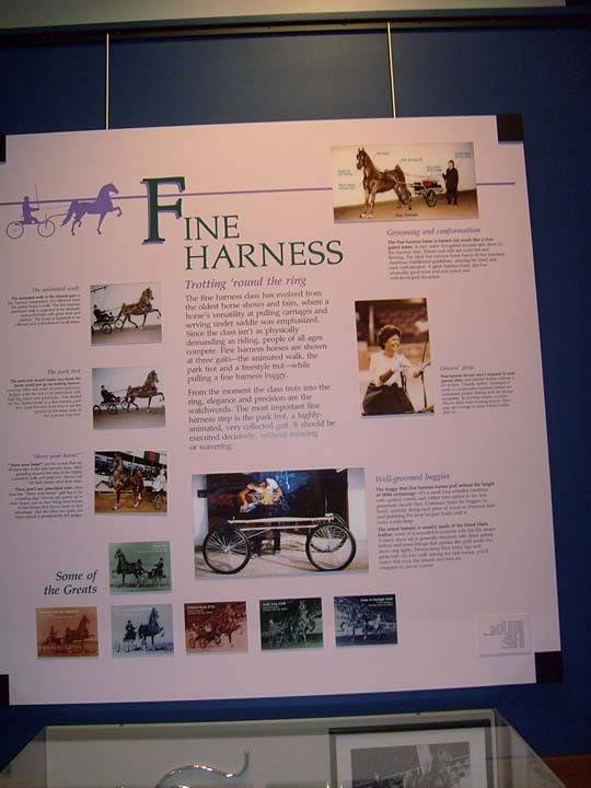The BEST of Walking Horse Trivia! - Page 25 S6300363