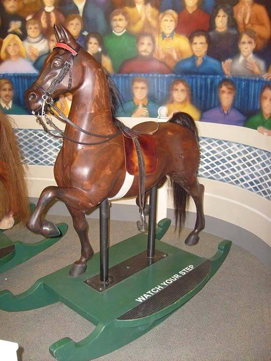 The BEST of Walking Horse Trivia! - Page 25 S6300370