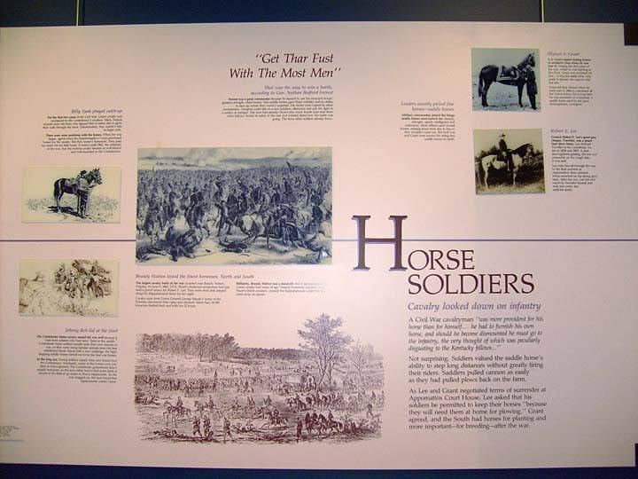 The BEST of Walking Horse Trivia! - Page 25 S6300377