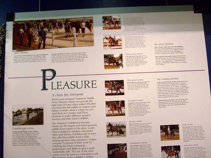 The BEST of Walking Horse Trivia! - Page 25 S6300380