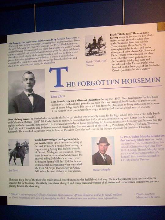 The BEST of Walking Horse Trivia! - Page 25 S6300381