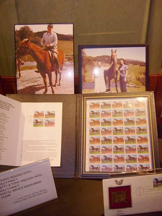 The BEST of Walking Horse Trivia! - Page 25 S6300386