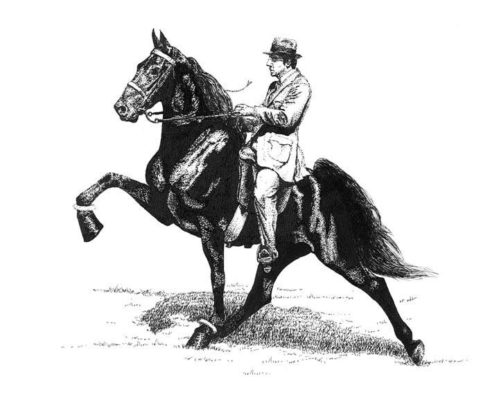 Equine Art - Page 2 TWHPenInk