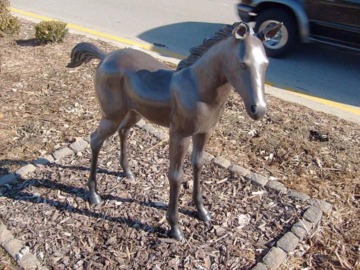 Equine Art Weanling1