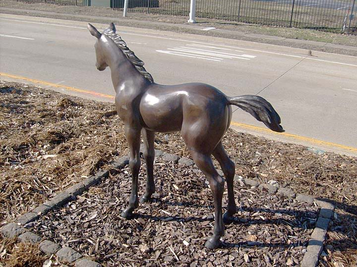 Equine Art Weanling3