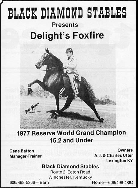 Kentucky, Ohio & Indiana Memories - Page 5 DelightsFoxfireGeneBatten
