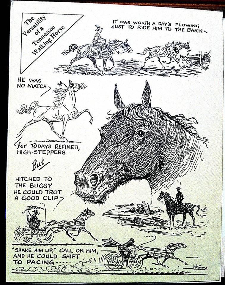 Equine Art - Page 6 JackKnoxBackCover