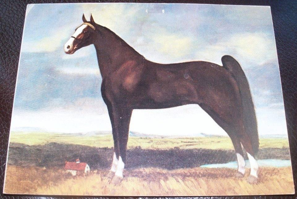 Equine Art - Page 6 MerryLegsPainting