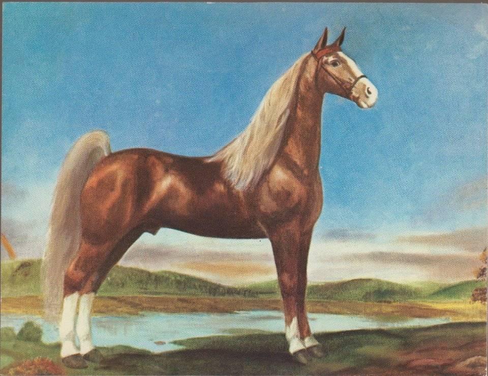 Equine Art - Page 6 RoanAllenPainting