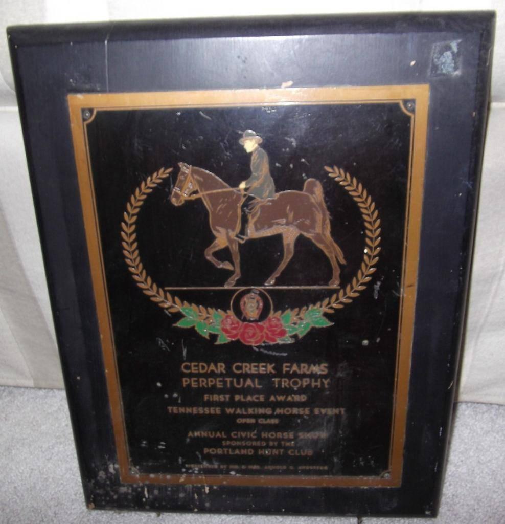 Equine Art - Page 6 TWHEtchedCopperHorseShowAwardpg