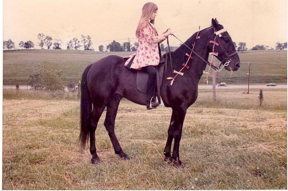Kentucky, Ohio & Indiana Memories - Page 15 TanyaHaleonPlantationHorse