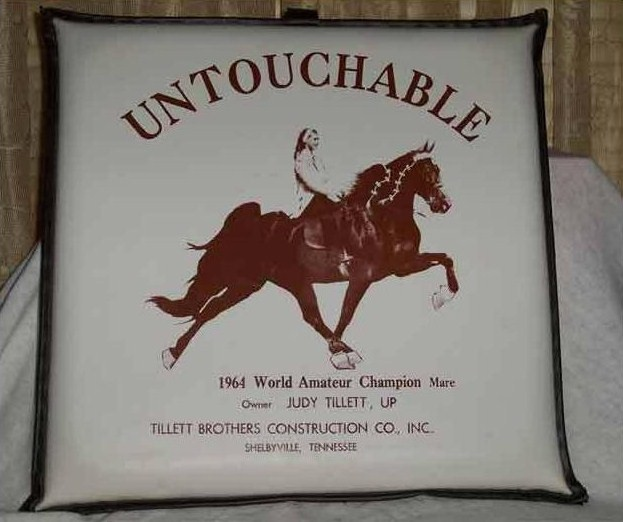 Photos & Memorabilia - Page 16 UntouchableCushion