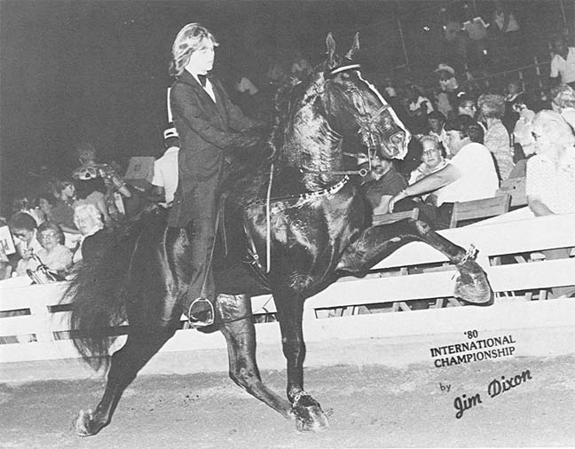 The BEST of Walking Horse Trivia! - Page 5 HappyHollowCurious